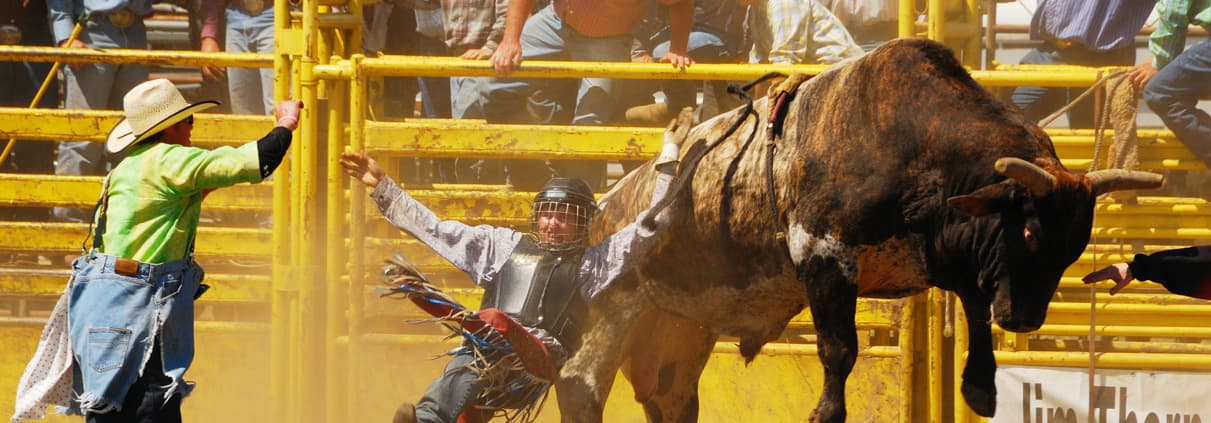 Rogue Valley Rough Stock Rodeo